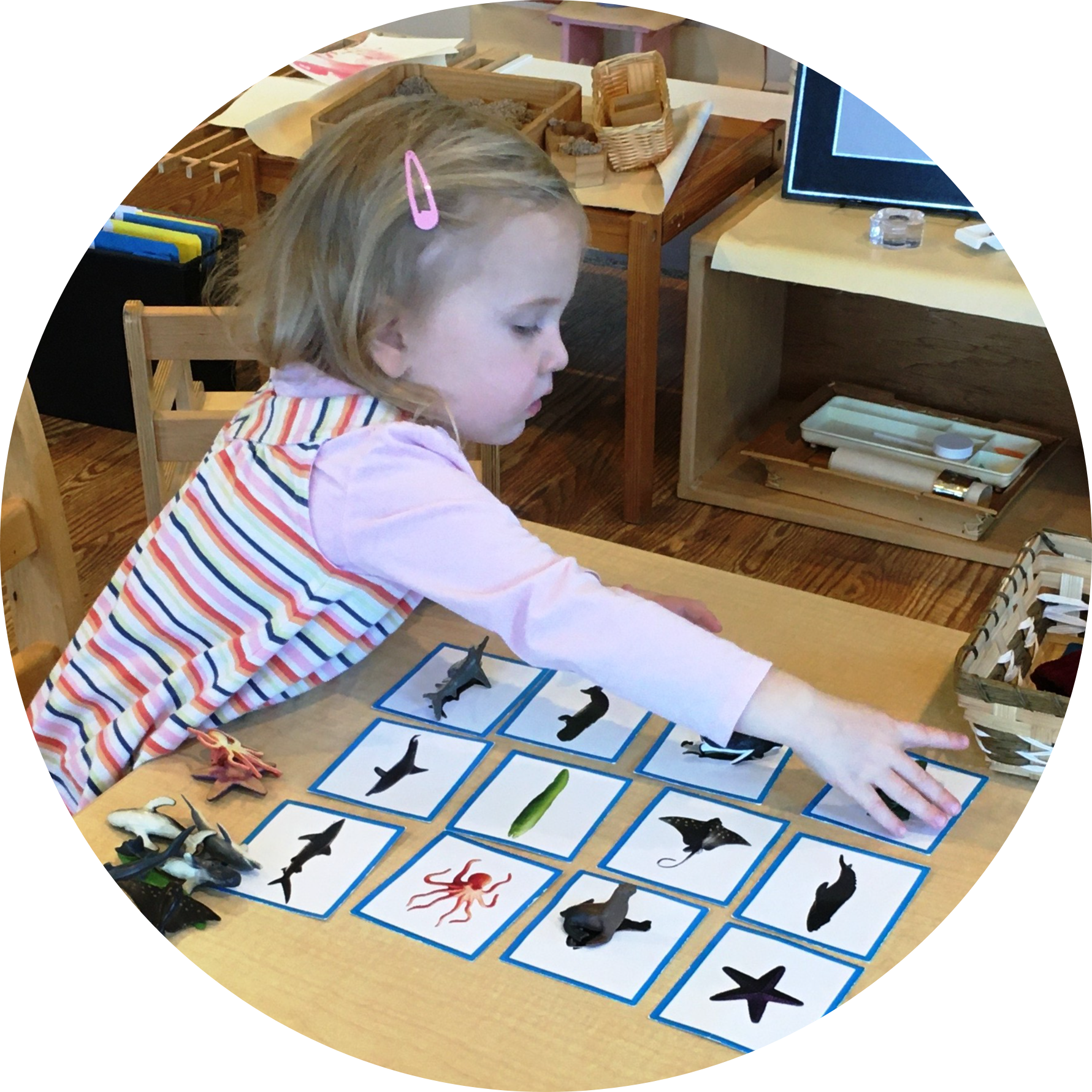 Montessori Toddler matching sea creatures